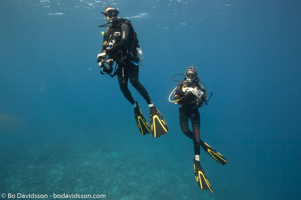 BD-150425-Maldives-8479-Homo-sapiens.-Linnaeus.-1758-[Diver].jpg